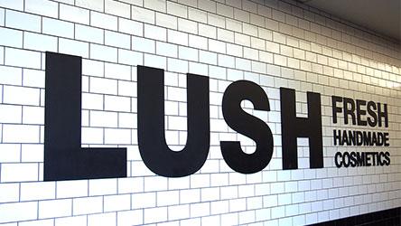 【シリーズ】人材難の時代に選ばれる企業:LUSHの人と文化編①「急成長期に直面する人事課題」